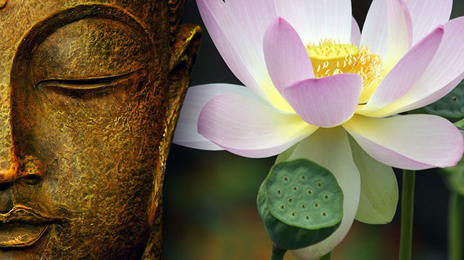 Gnose-Buddhista